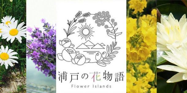 「浦戸 諸島 復興」の画像検索結果