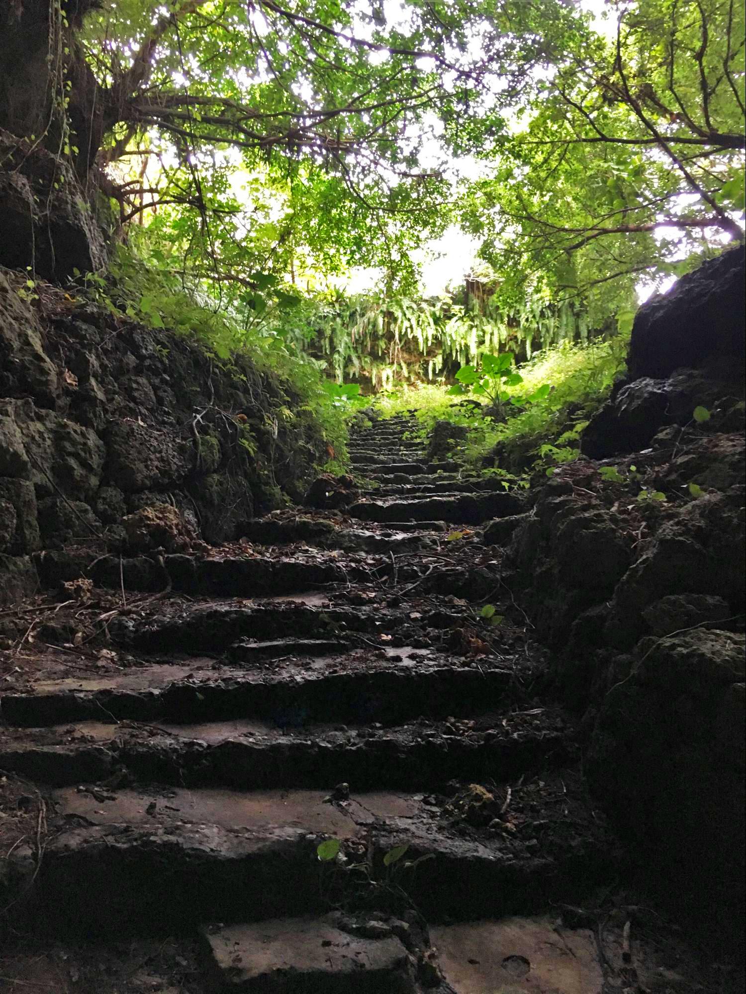 盛加井  石段