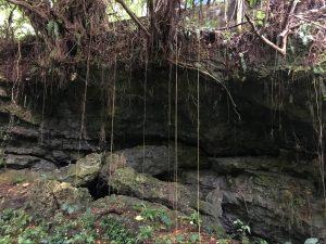 盛加井 地層の壁②
