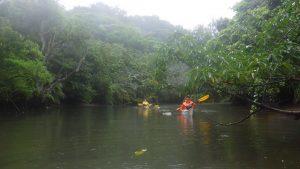 《上流付近のナーラ川①》