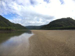 《ナーラ川の中洲》