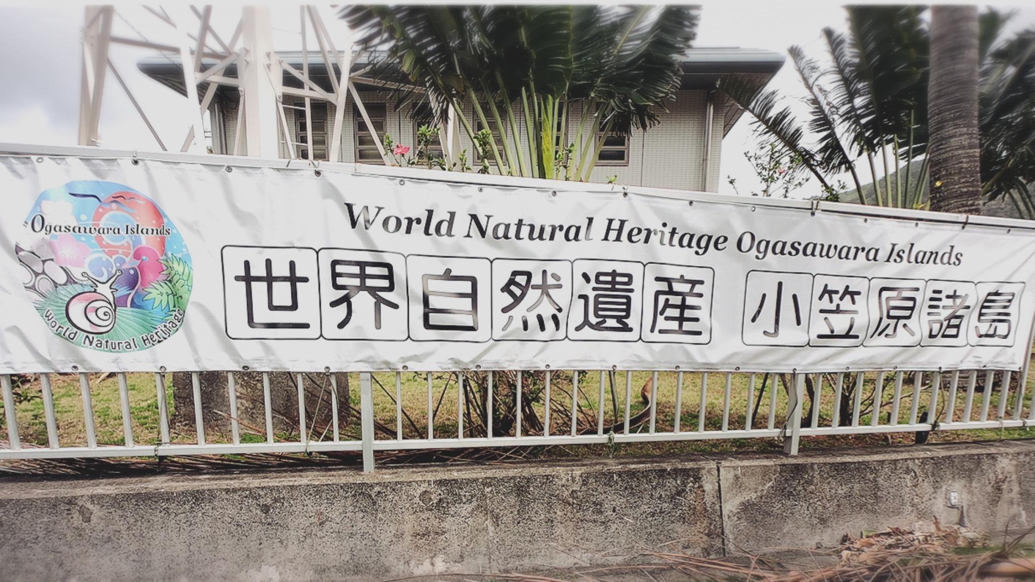 世界自然遺産小笠原諸島