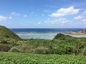 片山 正樹様プロフィール写真